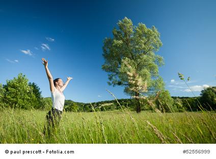 Frei sein als Freiberufler